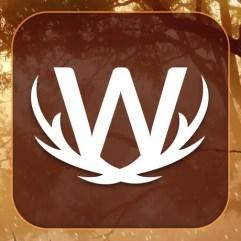 Word Wild Lösungen und Antworten
