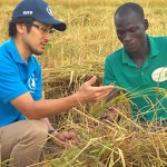WFP Jobs in Ethiopia 2020 | WFP Recruitment Process