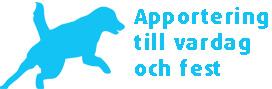 Apporteringskurs i Stockholm i helgen