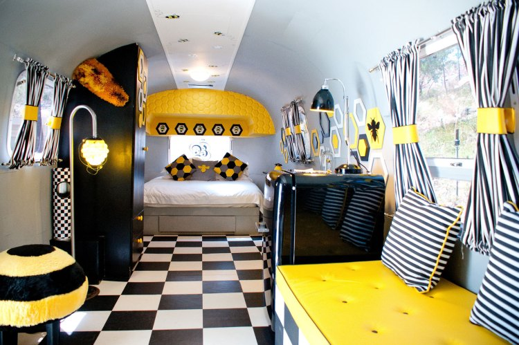 Black White And Yellow Bedroom Decorating Ideas Gray Decor Atmosphere Jacket Clothing Purple Dog City Shirt Spider Apppie Org