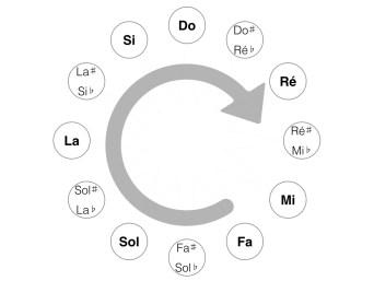 Cercle de Notes chromatique