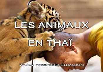 Les Animaux en Thaï