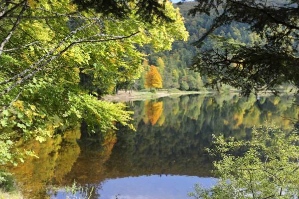 Lac automne, le départ approche