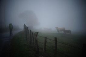 Réveil dans la brume, Aveyron