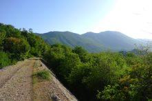 Ciro Trail
