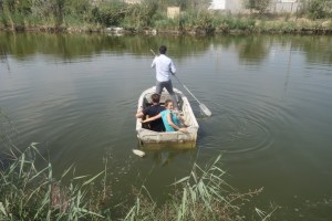 Un tour de barque