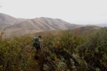 """""""Raccourci"""" dans les montagnes"""