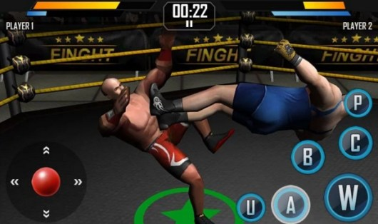 Real_Wrestling_3D_for_PC_Download