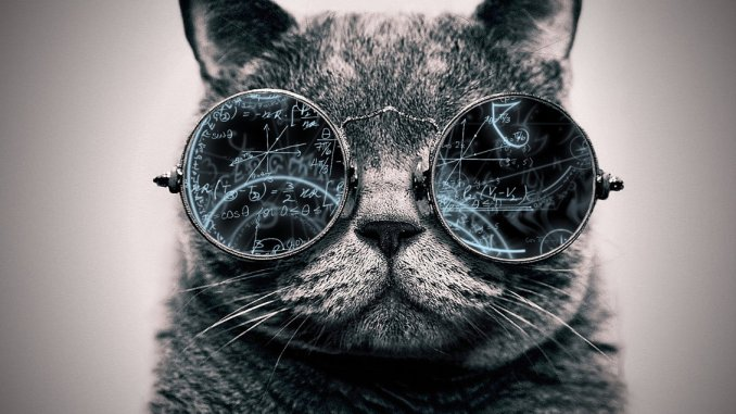cool_cat__genius_by_tovalhalla-d95cisd