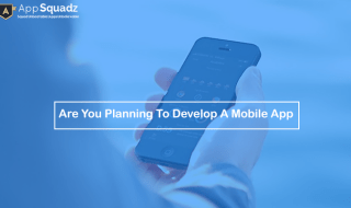 Are You Planning to Develop a Mobile App
