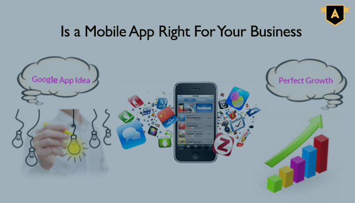 Native Mobile App Development