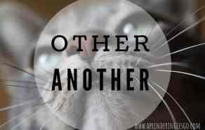 OTHER y ANOTHER - ¿Cuál es la diferencia?