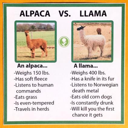 alpaca-llama-vicuna-guanaco