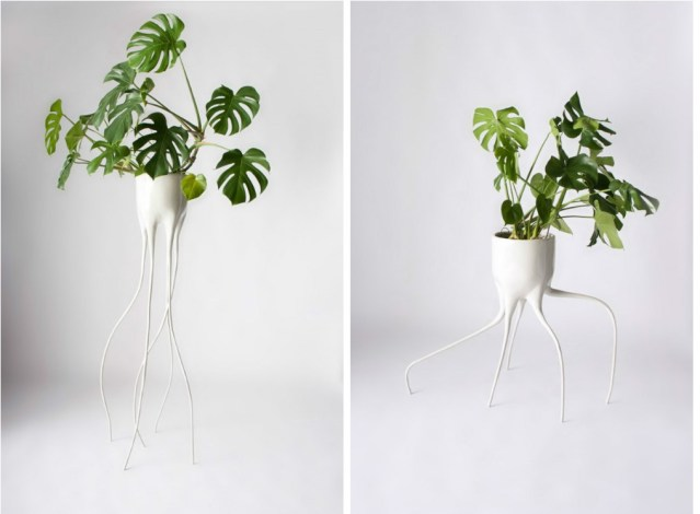 Monstera planter -design Tim van de Weerd