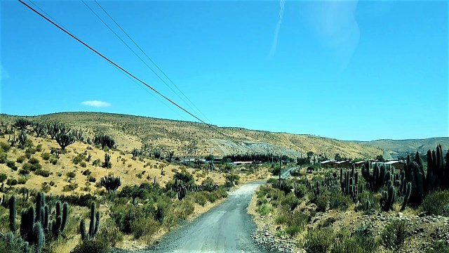 Termas de Socos - Carnet de voyage au Chili / Après la flemme