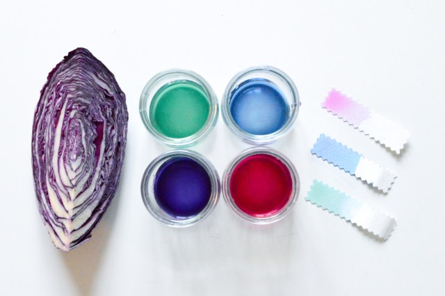 Teinture naturelle au chou rouge / Après la flemme DIY