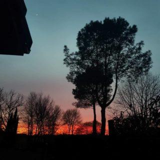 Pas besoin de retouches pour le ciel de ce soir 🔥  Si on n'était pas actuellement embourbés dans les découpes de notre meuble/lave-main/WC, je n'aurais sûrement pas remarqué ce beau ciel par la fenêtre. Comme quoi... __________________________________ #leslandes #skyporn #sunset #igerslandes #nofilter #aquitaine #nofilter #kindabreak #colors #ciel #couleursnaturelles #spring #coucherdesoleil