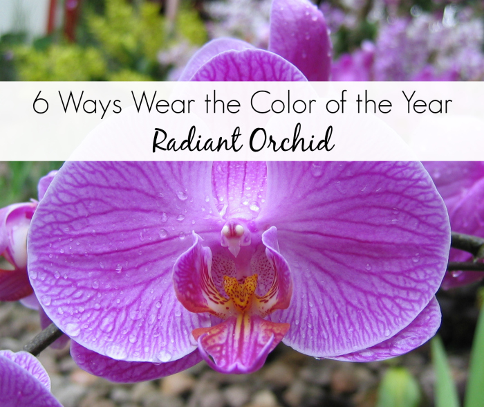 6 Ways to Wear Radiant Orchid Color of the Year