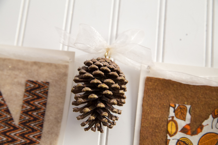 Thanksgiving Pine Cones DIY-9527