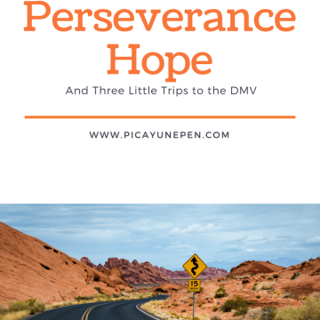 Perseverance Hope and Three Little Trips to the DMV by April Hayman at www.Picayunepen.com