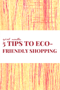 5 Tips to Eco-Friendly Shopping | How to Shop at Thrift Stores | AprilNoelle.com