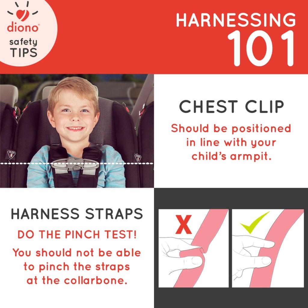 Harness 101