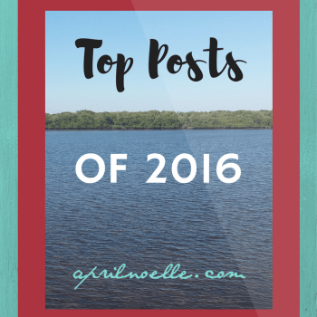 Top Posts of 2016 | AprilNoelle.com