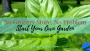 Start Your Own Garden | Ron Finley | AprilNoelle.com