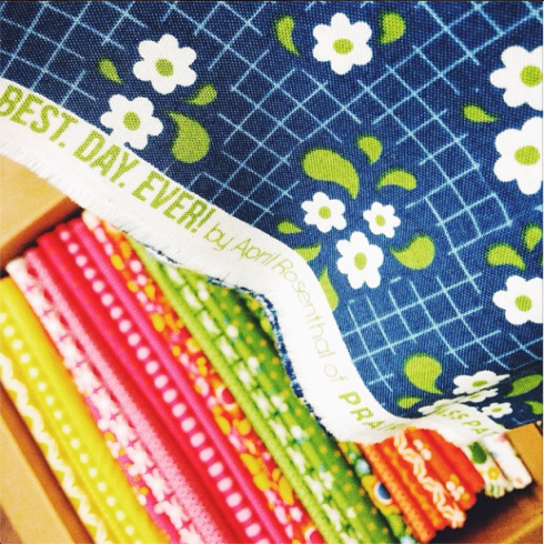 Best. Day. EVER! by April Rosenthal of Prairie Grass Patterns for MODA