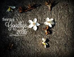 Saying Goodbye to 2016