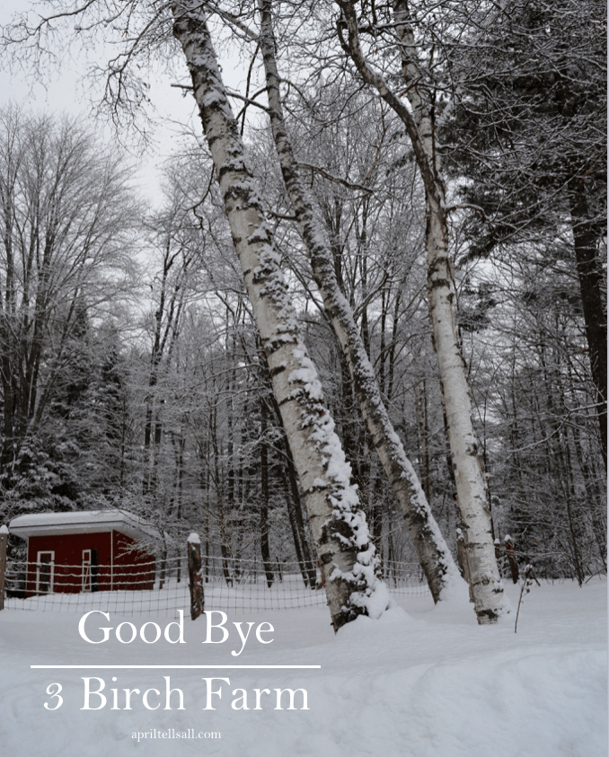 Goodbye, 3 Birch Farm