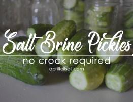 Salt Brine Pickles [no fancy equipment needed]
