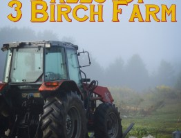 Tales of 3 Birch Farm: Stampede