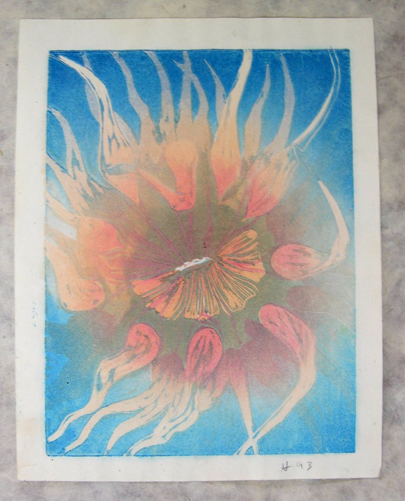 1993-anemone