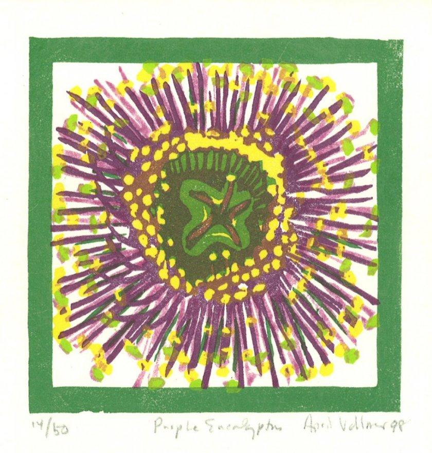 1998purpleeucalyptus