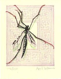 2000mosquitoyear
