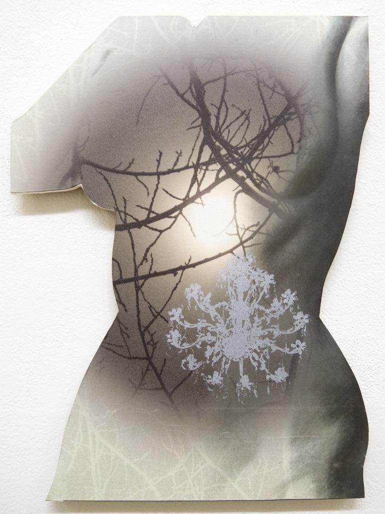 2011-37-torso-5-on-wood