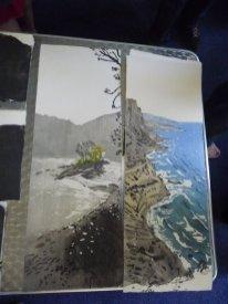 Eva's landscapes