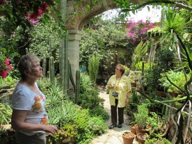 Lorraine and Mary check out the garden