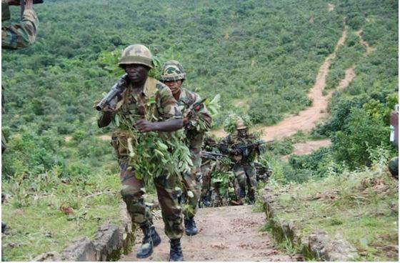 Troops Bombard Sambisa Forest