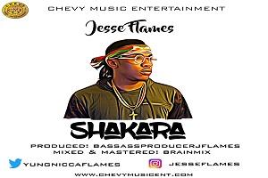 Jesse Flames Pumps With 'Shakara'