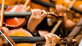 OSP tem vagas para violino e trompa