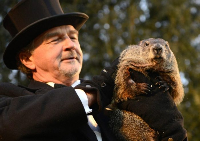 Groundhog co-handler Griffiths holds up groundhog Punxsutawney Phil after Phil's annual weather prediction on Gobbler's Knob on the 130th Groundhog Day in Punxsutawney