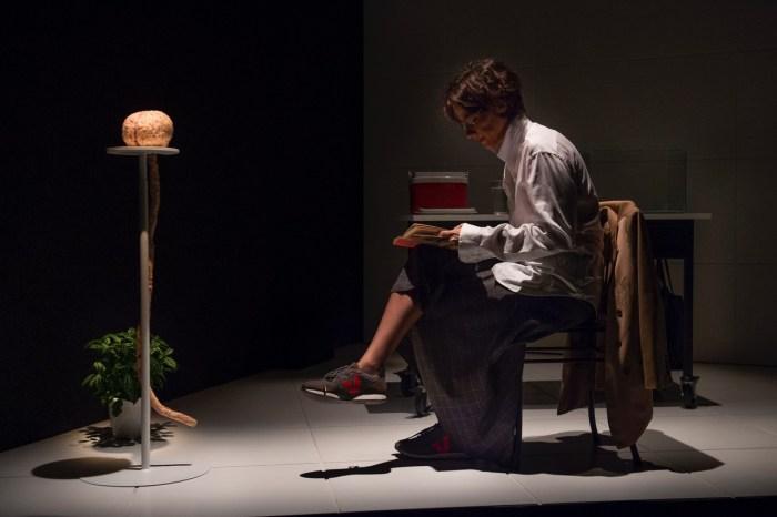 07.2019 – Teatro – Cerebro coracao – Mauricio Fidalgo. – 1