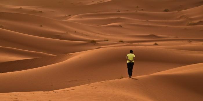 desert-1623120_1920_Daniel-Wanke_Pixabay