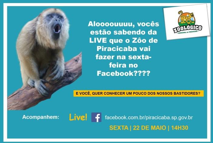 Zoologico-Piracicaba_live