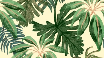 Dicionário Terminológico Bilíngue de Plantas é lançado em formato virtual