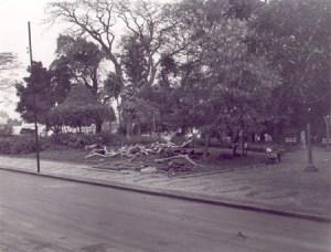 O finado Jardim da Ponte