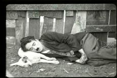 vida-de-cachorro-foto-2