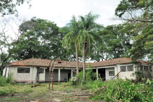 ESCOLA DO PAU D'ÁLHO 0117JJ1